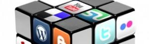 Les réseaux sociaux : facebook, twitter, viadeo, linkedin, xing
